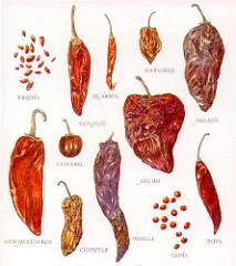 Piments secs